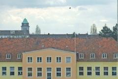 Blick übers Krankenhaus zu St. Bruno